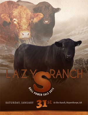 Lazy S Ranch Sale
